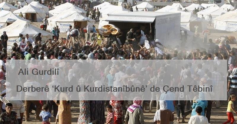 Derberê 'Kurd û Kurdistanîbûnê' de Çend Têbinî