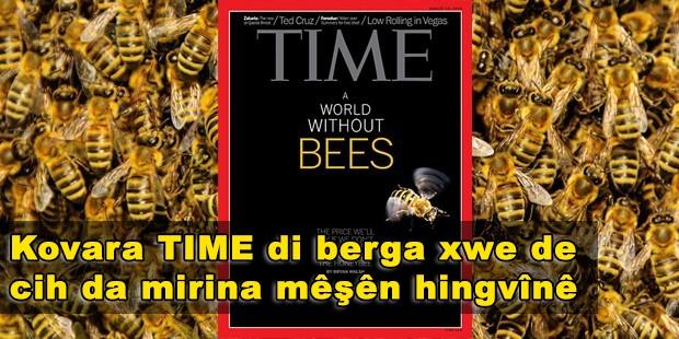 Kovara TIME di rûpela xwe ya pêşiyê de cih da mirina mêşên hingvînê