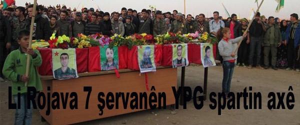 Li Rojava 7 şervanên YPG spartin axê