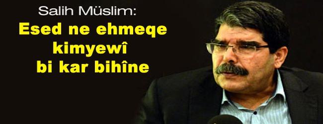Muslim: Esed ne ehmeqe kimyewî bi kar bihîne